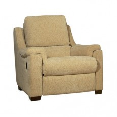 Recliner and Riser Chairs